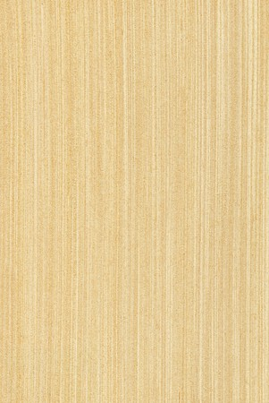 Texture of maple (high-detailed wood texture series)