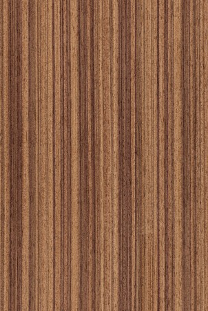walnut tree: Texture of walnut (high-detailed wood texture series)