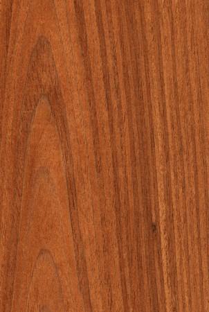 Textura de madera de nogal (de alto detallada serie de textura de madera) Foto de archivo - 4305072