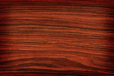 Texture of rosewood (high-detailed wood texture series) Stock Photo - 4415271