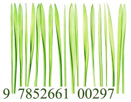 Bar code made from grass blades isolated on white photo