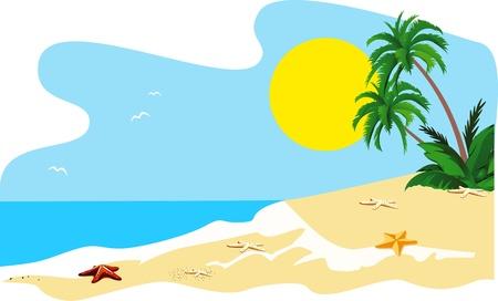 Paisaje de una costa del vector de isla tropical