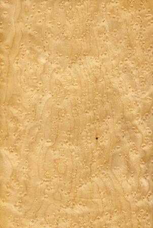 maple wood texture: Texture of maple bird s eye  high-detailed wood texture series  Stock Photo