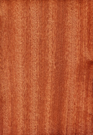 Texture of sapele  high-detailed wood texture series  Standard-Bild