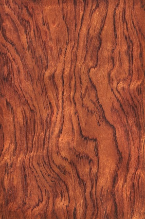 Texture of guibourtia  high-detailed wood texture series Stock Photo - 12773110