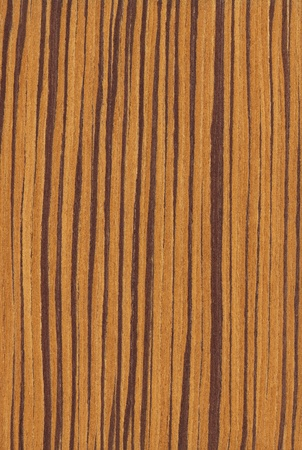Texture of zebrano  high-detailed wood texture series  Standard-Bild