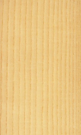 Texture of pine  high-detailed wood texture series