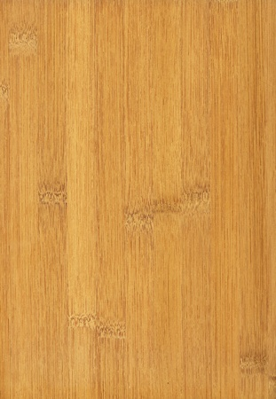 Texture of bamboo  high-detailed wood texture series  Standard-Bild