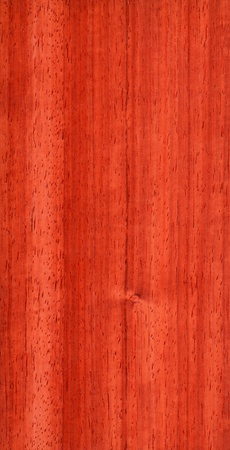 Texture of pterocarpus  high-detailed wood texture series  Standard-Bild