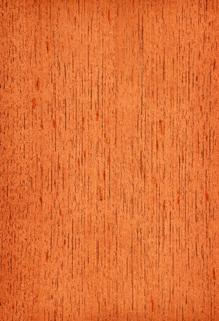 Texture of cedar  high-detailed wood texture series  Standard-Bild