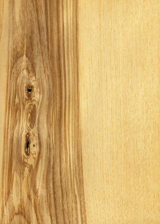 ash tree: Texture di frassino ad alta serie dettagliate struttura di legno