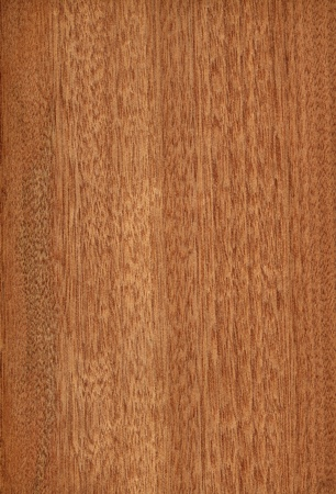 Texture of gabon  high-detailed wood texture series  Stock Photo - 12773106