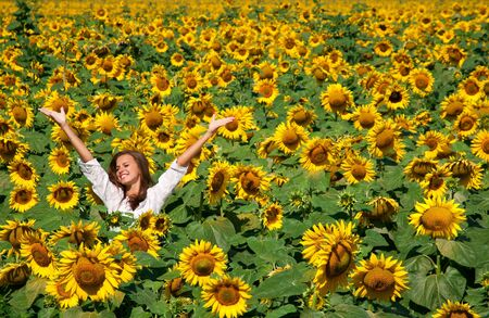 Beautiful girl on the field of sunflowers photo