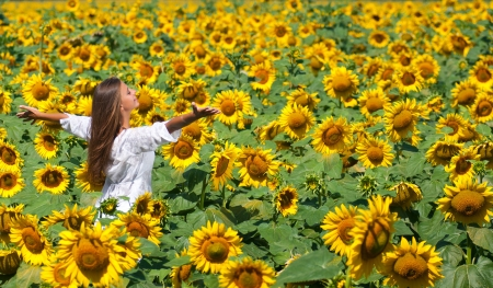 Beautiful girl on the field of sunflowers Standard-Bild