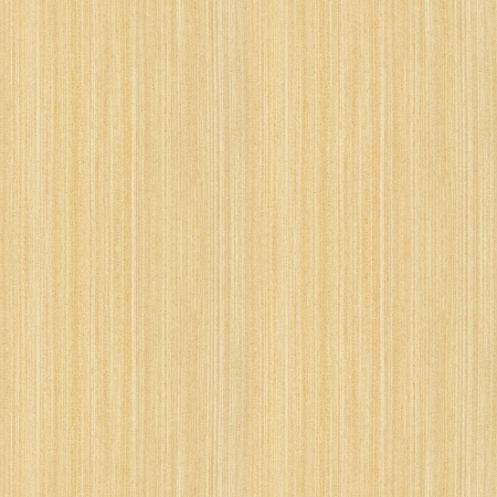 wooden pattern: Vero seamless texture di acero di alta serie dettagliate struttura di legno Archivio Fotografico