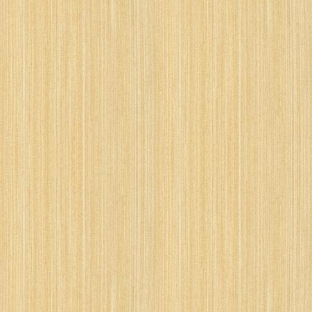 holz: Wahre nahtlose Beschaffenheit der Ahorn hoch-detaillierte Holz Textur-Serie