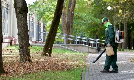 jardinero: Paisajista operativo gasolina soplador de hojas al limpiar las pistas en el Parque