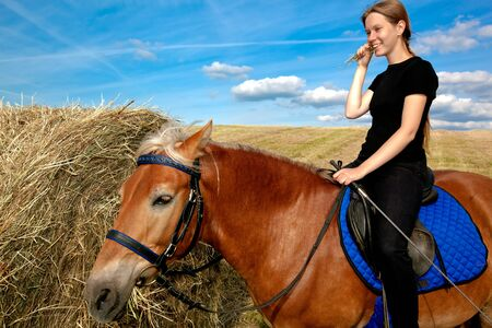 horse laugh: Yummy Hay