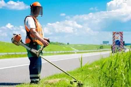 gras maaien: Weg tuinarchitect snijden gras langs de weg met behulp van touw gazon trimmer Stockfoto