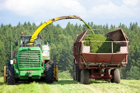 Silage Season - harvester cutting a field and loading crushing grass into a tractor trailer photo