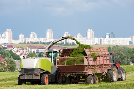 Silage Season - Harvester cuts a field and loading crushing grass into a tractor trailer photo