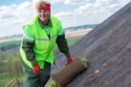 paysagiste: travailleuse Paysagiste pose laminé gazon gazon pour une nouvelle pelouse