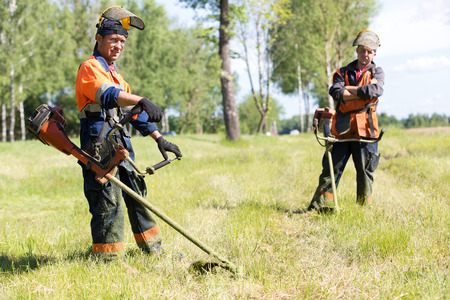 grass cutting: Positive landscapers men workers with gas handheld string trimmers equipment during grass cutting team works