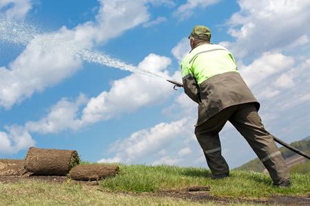 Gardener man worker watering grass during lawn reseeding Imagens