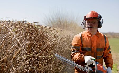 Landscaper worker with Hedge Trimmer during Bush cutting works
