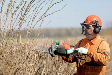 Professional Landscaper Cutting Hedgerows with Gas Powered Shears