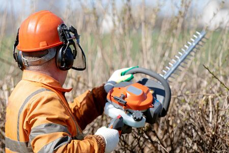 Hedge Cutting Services. Professional Landscaper Gardener Man Worker in uniform and hearing Protection Headphones trimming hedgerow with Gas Powered Clipper