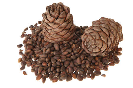 pine nuts and cones on a white background photo
