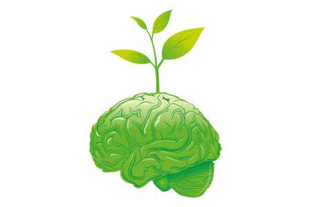brain eco