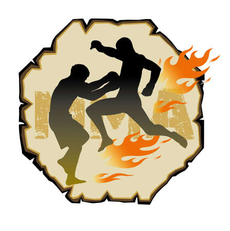 artes marciales mixtas: Artes marciales mixtas