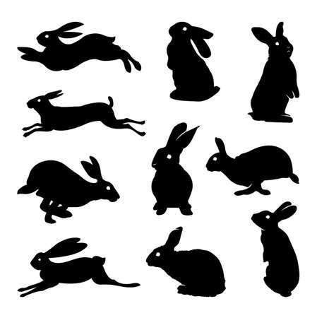 Rabbit silhouette Illustration