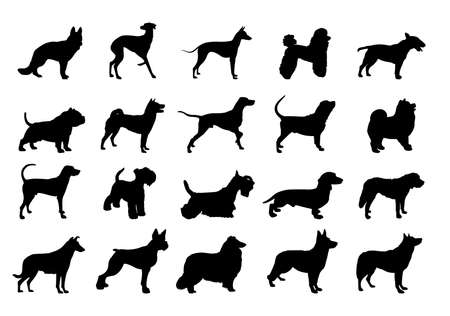 collection of dogs silhouette.Silhouette of the Dog.illustration with set of dogs isolated on white background. Çizim