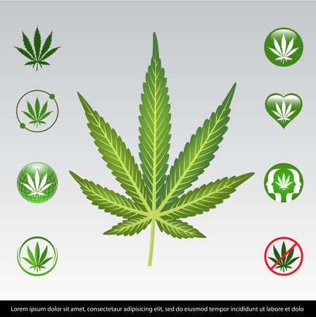 Marijuana or cannabis leaf  Vector illustrator and icon