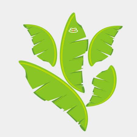 banana leaf: Ganesh con hoja de pl�tano Vectores