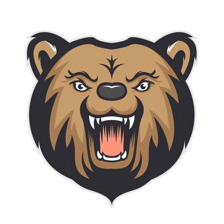 Bear head mascot isolated in white background