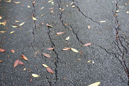 crevasse: Close up for the crevasse of road surface with the leaf fall Stock Photo