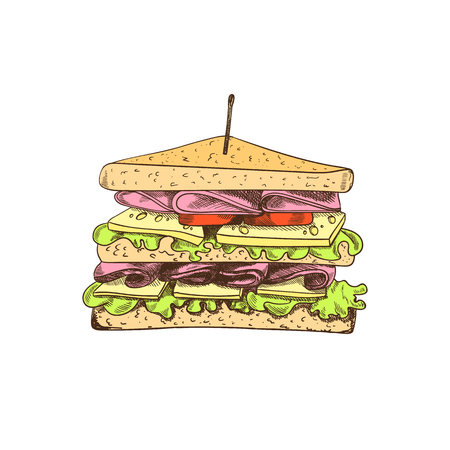Vector Colored Sandwich Drawing, Isolated on White Background Colorful Food Sketch. Colorful Illustration. Vettoriali