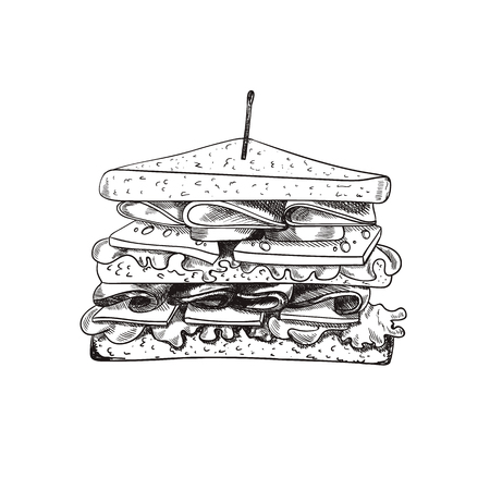 Vector Hand Drawn Sandwich with a Teethpick, Doodle Freehand Drawing, Isolated on White Background Food.