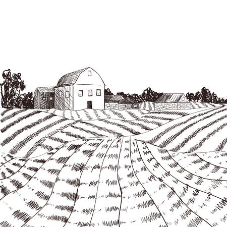 Dibujo de estilo grabado de granja vectorial, líneas negras.