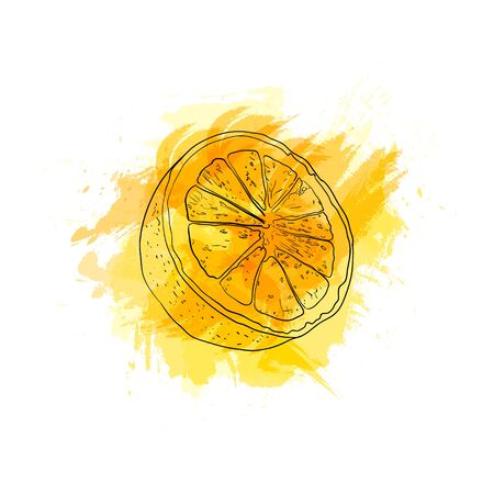Vector Hand Drawn Lemon Splash, Bright Yellow Color, Drawing on the Abstract Paint Splash Isolated on White Background.