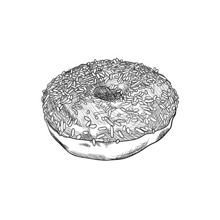 Vector Hand Drawn Donut, Black and White Detailed Sketch, Vintage Drawing Isolated on White Background.