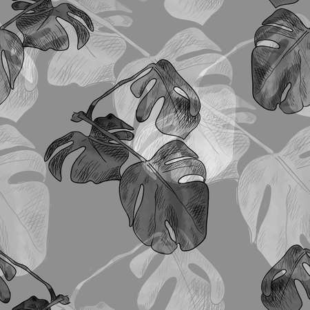 Vector floral seamless pattern, monochrome background template, mostera plant, leaves ornament, decorative graphic backdrop, dark and light leaves. Фото со стока - 153997510