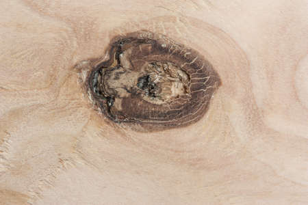 Plywood with a beautiful knot resembling the pupil of the eye. Interesting background. Stok Fotoğraf