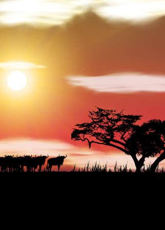 Afrika Vector