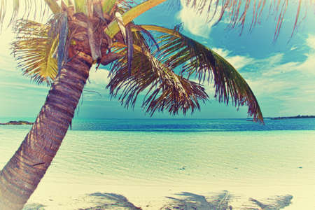 Beautiful tropical beach with palm trees retro Stock Photo