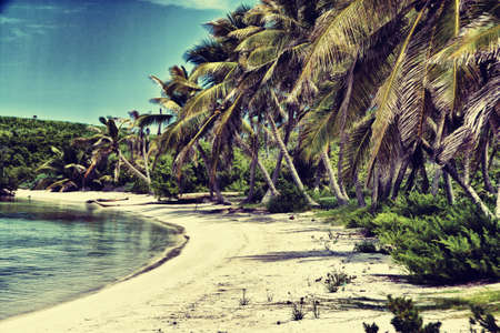 Beautiful tropical beach with palm trees retro photo